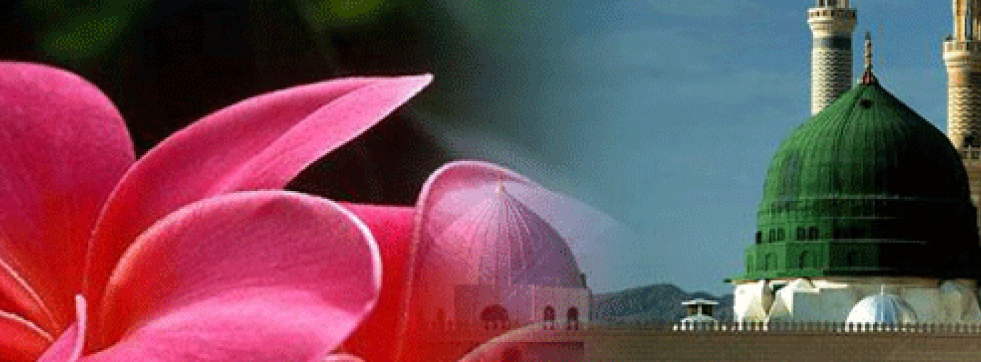 Love and Reverence for the Prophet sallallāhu 'alayhi wasallam