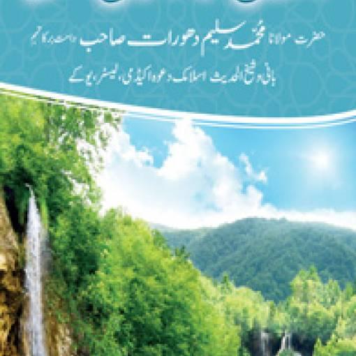 Islāh kā Āsān Nuskhah