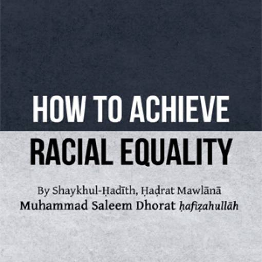 How to Achieve Racial Equality