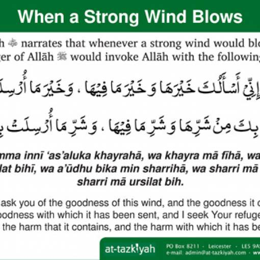 When a Strong Wind Blows
